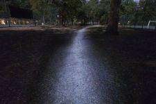 chemin de nuit dans un bois